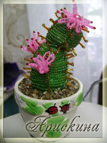 цветок кактуса из бисера схема. схемы