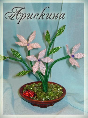 Цветы из бисера. бисер кактус